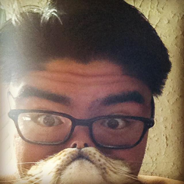fullym-catbeards-3