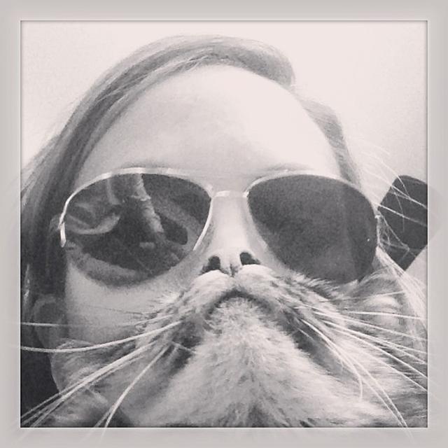 fullym-catbeards-4
