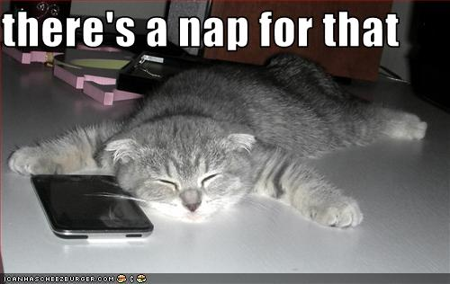 Theres-nap-for-that-image