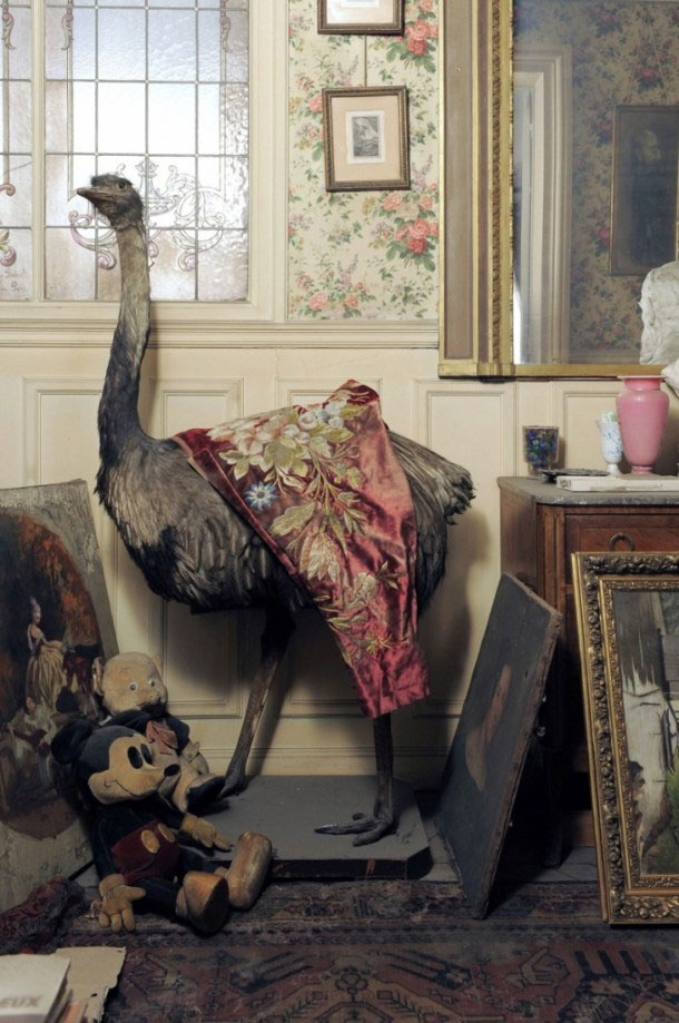 perfectly-preserved-paris-apartment-discovered-after-70-years-with-valuables-and-paintings-3