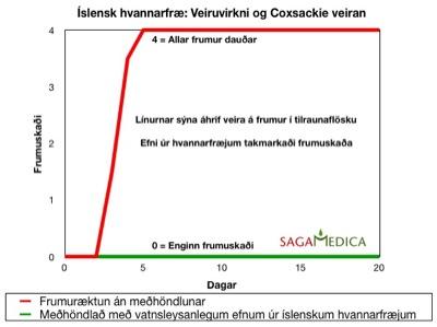 Islensk-hvannarfrae_veirudrepandi-efni
