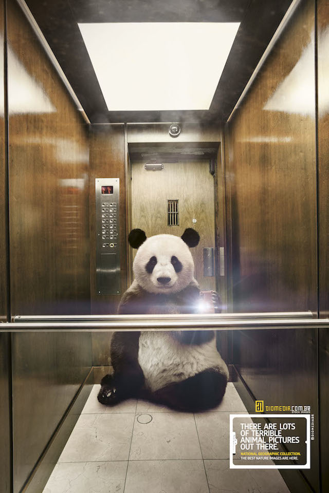 Selfie_National_Geographic-2