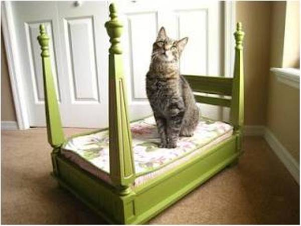 bed-side-table-pets-bed-2
