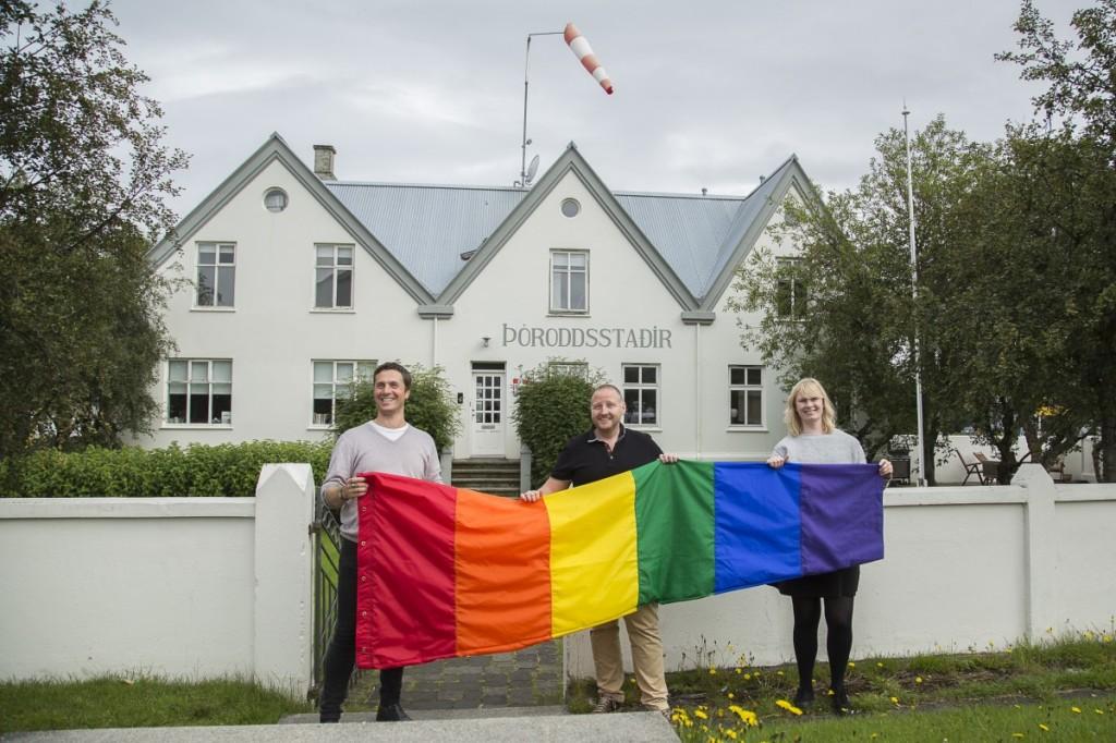 Vert-Gay-Pride-4