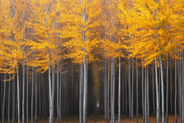 autumn_is_such_a_beautiful_season_640_03