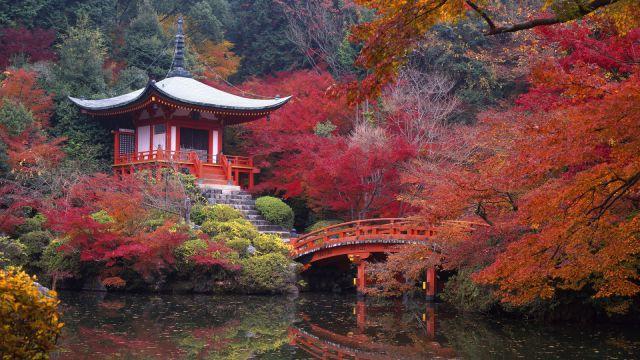 autumn_is_such_a_beautiful_season_640_09