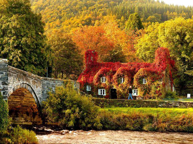 autumn_is_such_a_beautiful_season_640_12