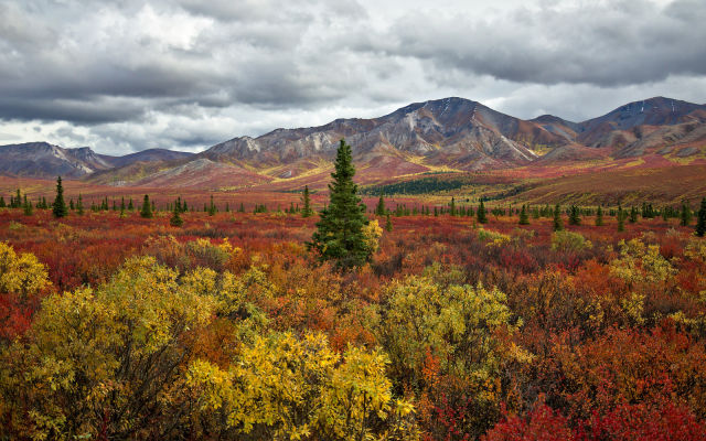 autumn_is_such_a_beautiful_season_640_17