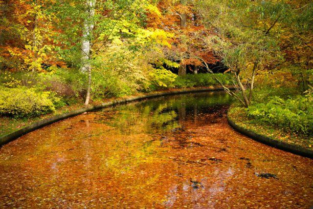 autumn_is_such_a_beautiful_season_640_20