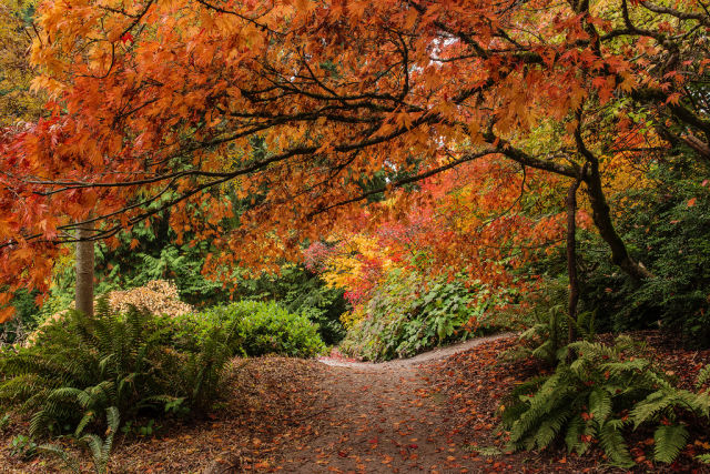 autumn_is_such_a_beautiful_season_640_25