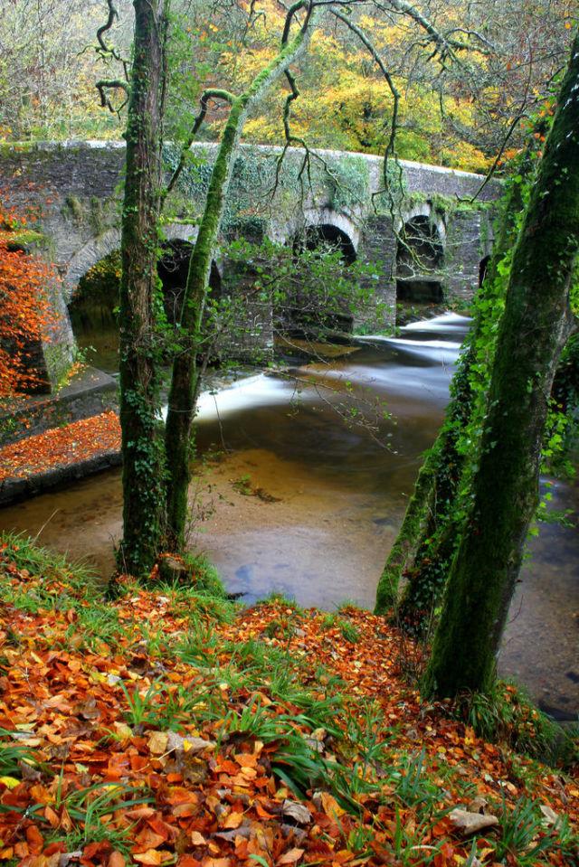 autumn_is_such_a_beautiful_season_640_high_07