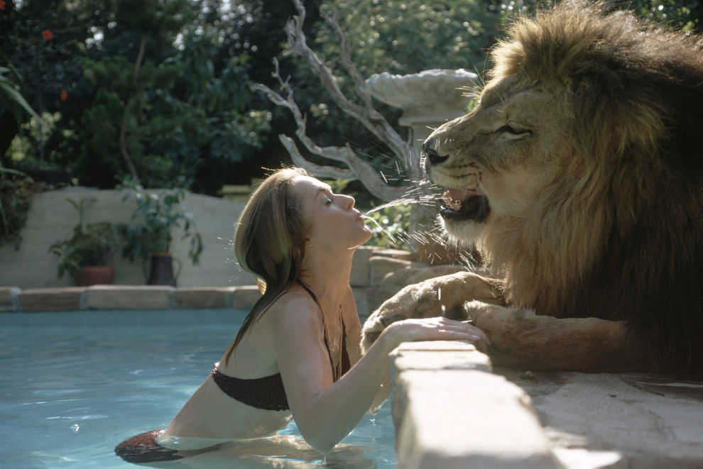 Her mother also bonded with the lion.
