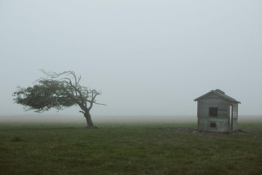 fog-1200-1__880