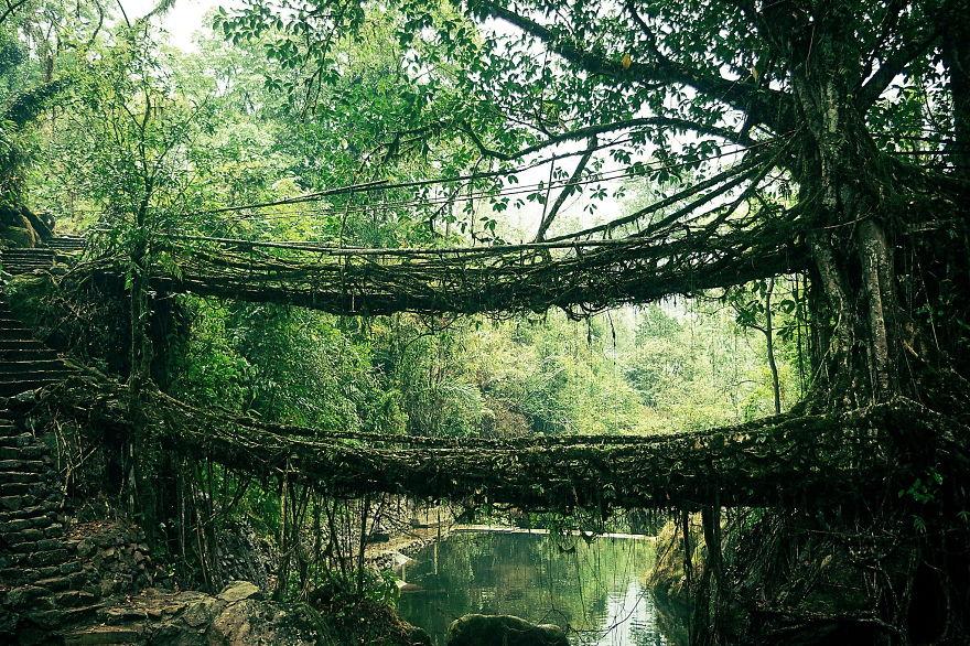 magical-bridge-14