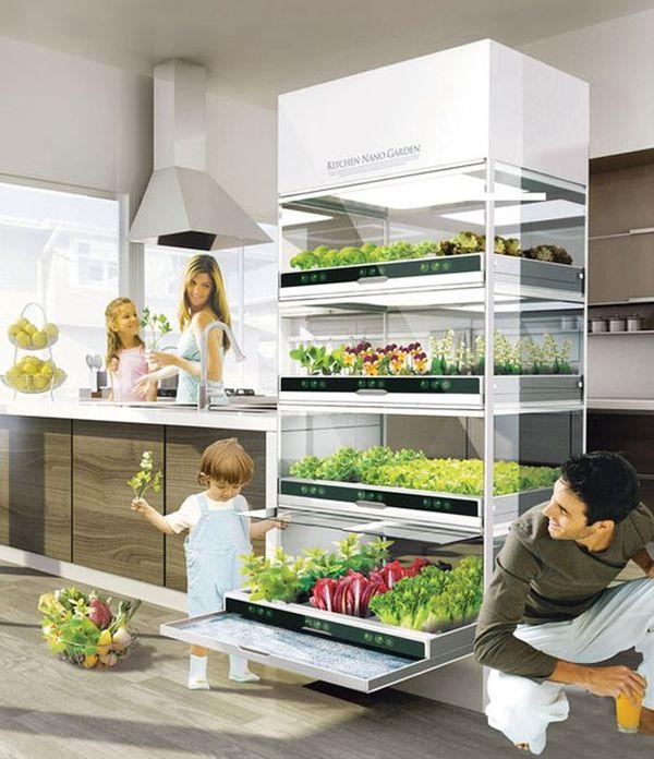 34-fridge