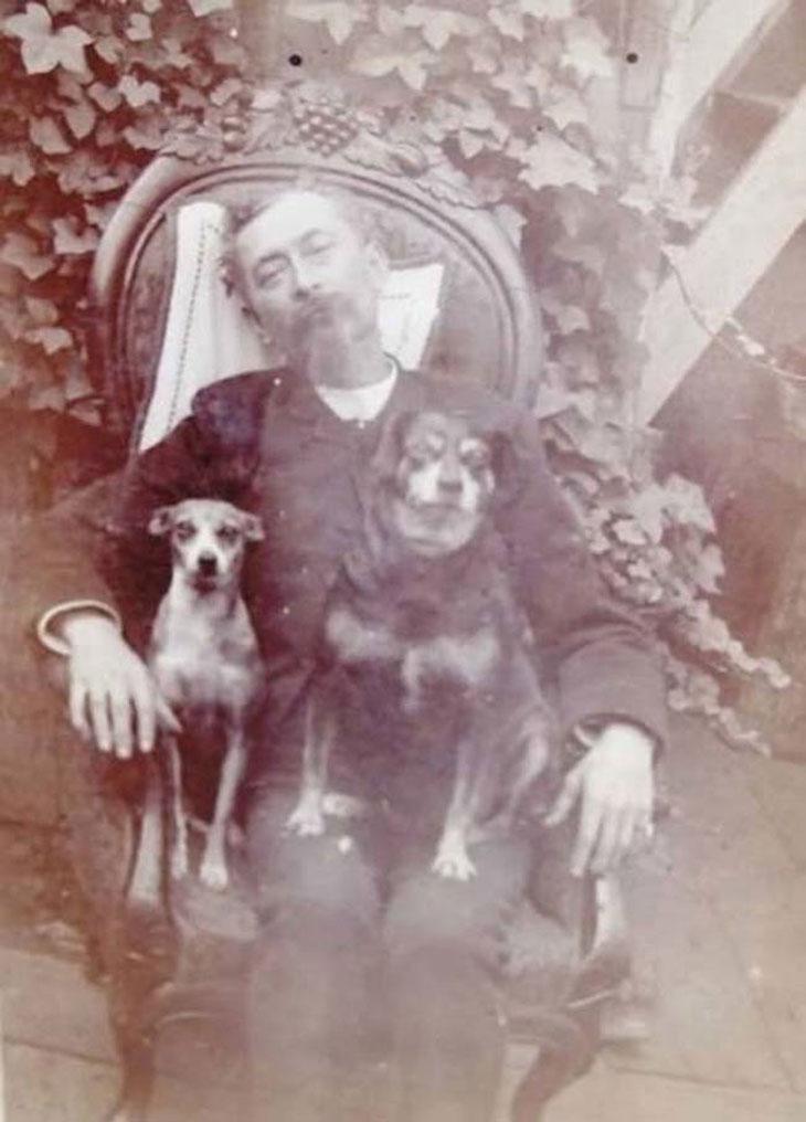 cool-post-mortem-photographs-pets-sitting