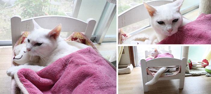 ikea-duktig-bed-hack-cat-bed-15