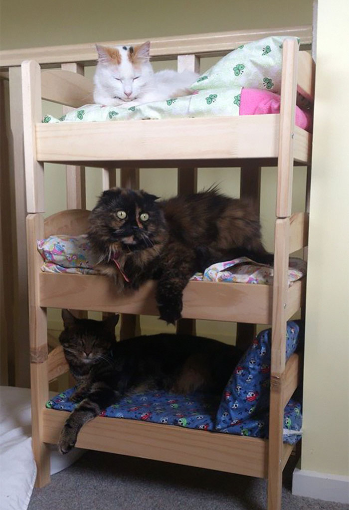 ikea-duktig-bed-hack-cat-bed-16
