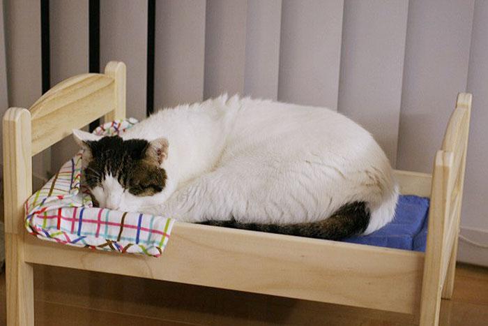 ikea-duktig-bed-hack-cat-bed-3