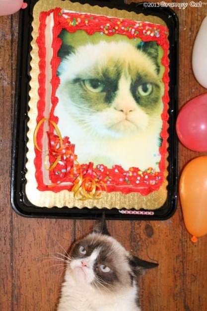 8. This Grumpy Cat who so hates you right now (but will stick around for cake).