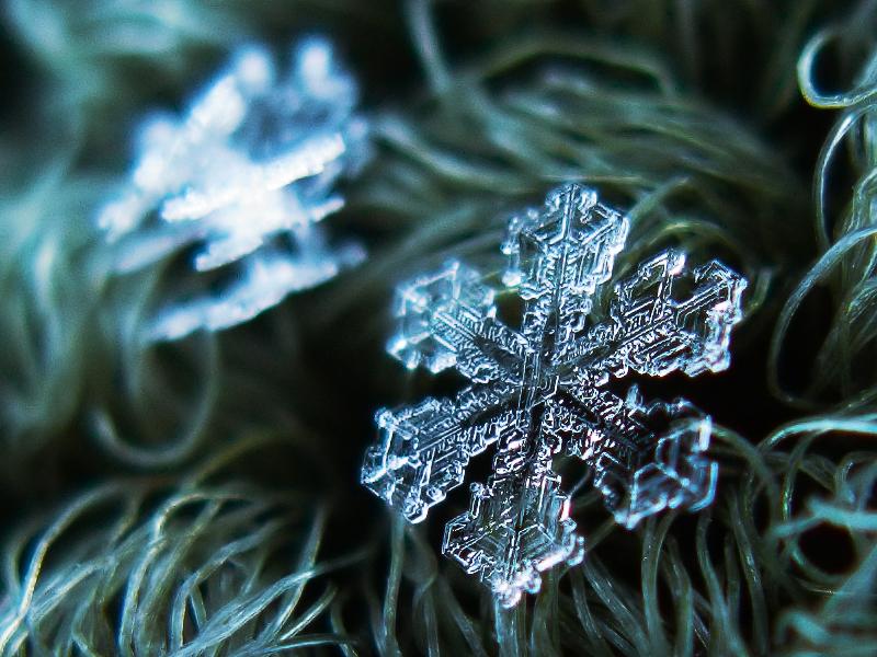 alexey_kljatov_snowflakes_and_snow_crystals_2
