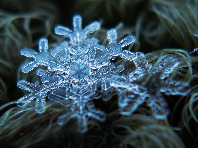 alexey_kljatov_snowflakes_and_snow_crystals_3