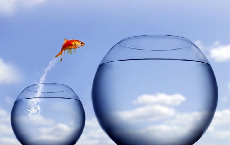 leap-of-faith1