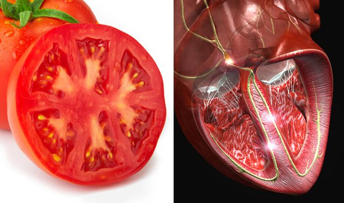 The-Appearance-Of-the-Food-You-Eat-Shows-Which-Organ-It-Cures-1