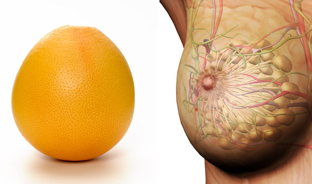The-Appearance-Of-the-Food-You-Eat-Shows-Which-Organ-It-Cures-7