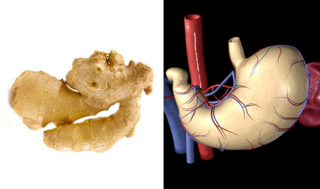 The-Appearance-Of-the-Food-You-Eat-Shows-Which-Organ-It-Cures-8