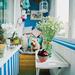 balcony-decorating-ideas-32-573c3b4633a0d__700