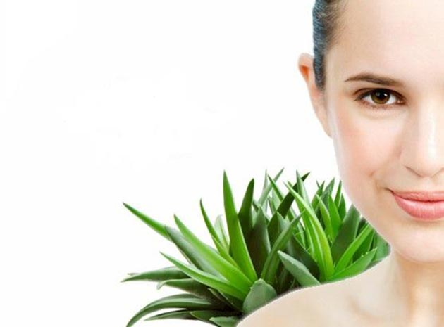 DIY_Aloe_Vera_hair_masks_fashionisers