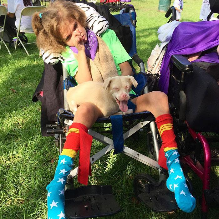 adorable-bat-dog-special-needs-taking-instagram-smile-7