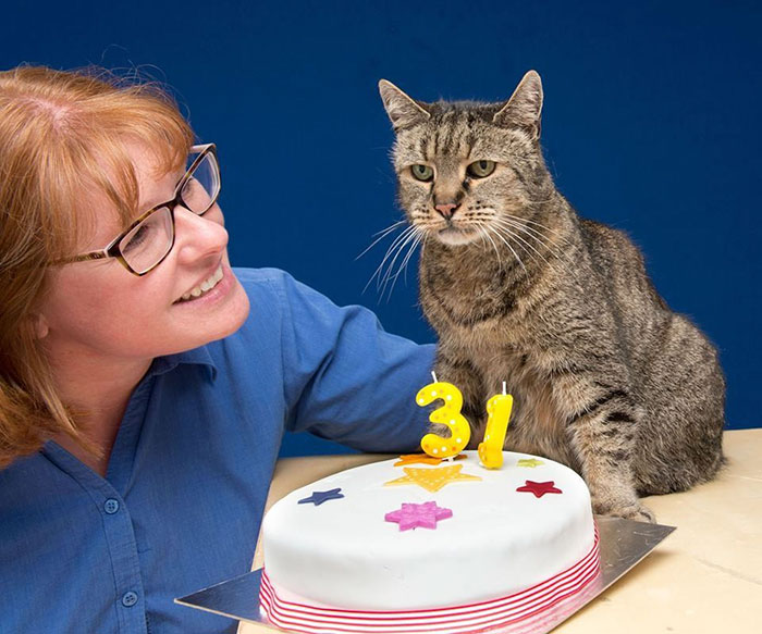 the-worlds-oldest-cat-has-just-celebrated-his-31st-birthday-1