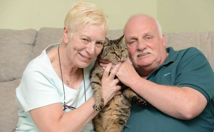 the-worlds-oldest-cat-has-just-celebrated-his-31st-birthday-3