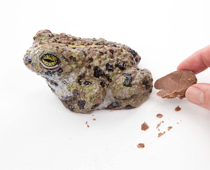 realistic-chocolate-sculptures-edible-museum-sarah-hardy-16