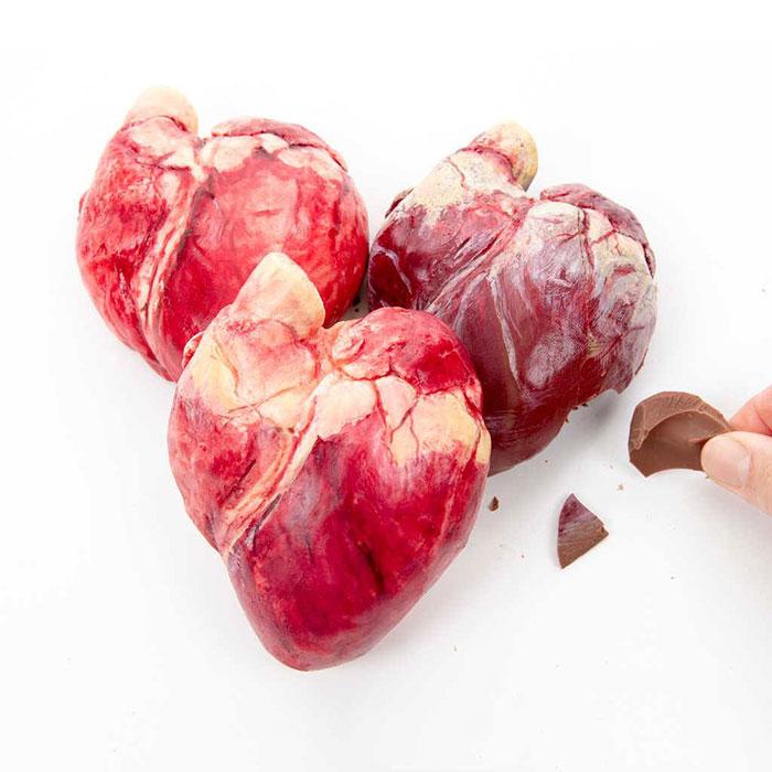 realistic-chocolate-sculptures-edible-museum-sarah-hardy-21