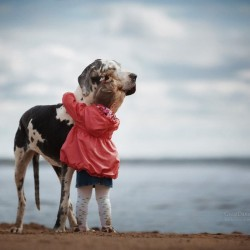 little-kids-big-dogs-photography-andy-seliverstoff-14-584fa917f1bf0__880.jpg