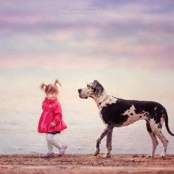 little-kids-big-dogs-photography-andy-seliverstoff-15-584fa91953feb__880.jpg