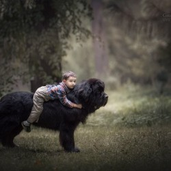 little-kids-big-dogs-photography-andy-seliverstoff-16-584fa91bae708__880.jpg