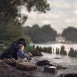 little-kids-big-dogs-photography-andy-seliverstoff-17-584fa91d88e5d__880.jpg