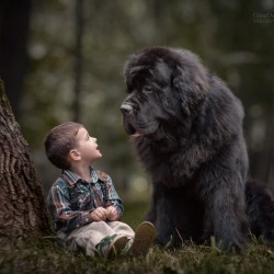 little-kids-big-dogs-photography-andy-seliverstoff-18-584fa91fa298c__880.jpg