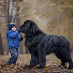 little-kids-big-dogs-photography-andy-seliverstoff-21-584fa925a264b__880.jpg