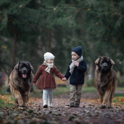 little-kids-big-dogs-photography-andy-seliverstoff-23-584fa92aa10d2__880.jpg