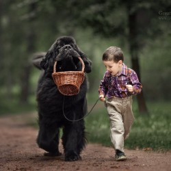 little-kids-big-dogs-photography-andy-seliverstoff-3-584fa903b4cd6__880.jpg