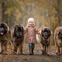 little-kids-big-dogs-photography-andy-seliverstoff-37-584fa94bad10a__880.jpg