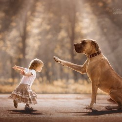 little-kids-big-dogs-photography-andy-seliverstoff-4-584fa905bee2a__880.jpg