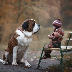 little-kids-big-dogs-photography-andy-seliverstoff-40-584fa953d7275__880.jpg