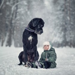 little-kids-big-dogs-photography-andy-seliverstoff-44-584fa95fcc8ec__880.jpg