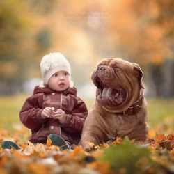 little-kids-big-dogs-photography-andy-seliverstoff-53-584fa977bce19__880.jpg